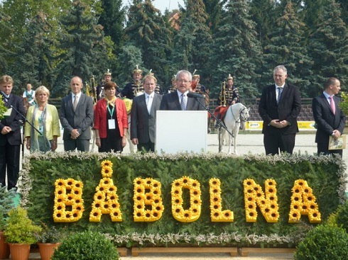 babolna 1