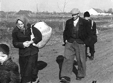 Brüsszel - a magyarok kitelepítéséről