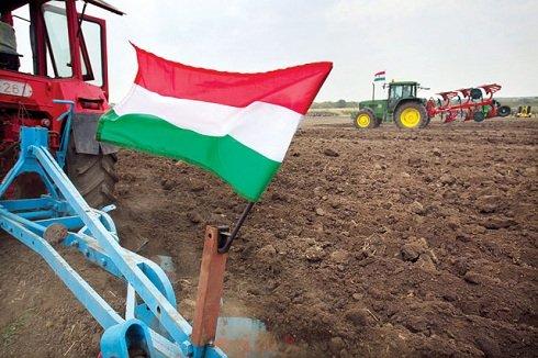 magyar-föld