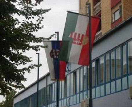 magyar-szerb