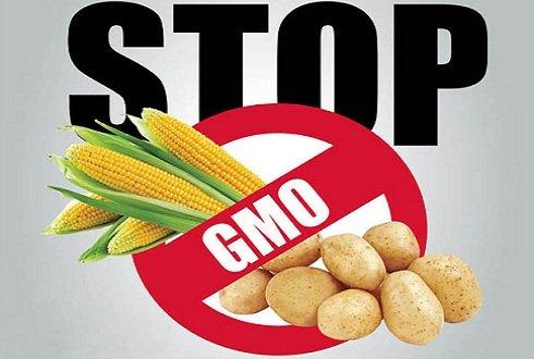 Magyarország alaptörvényében rögzítette: Stop a GMO-növényekre és termékekre