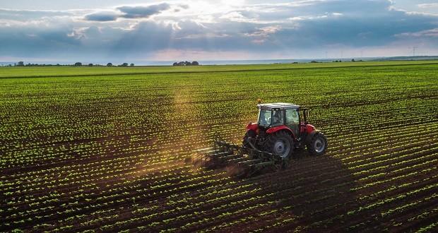 minden-ototdik-magyar-agrarvallalkozas-kulfodi-kezben