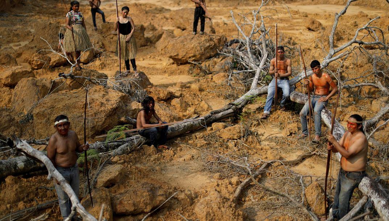 A Mura törzs őslakosai valaha erdővel borított területet mutatnak be az Amazonas térségében. Fotó: REUTERS / Ueslei Marcelino