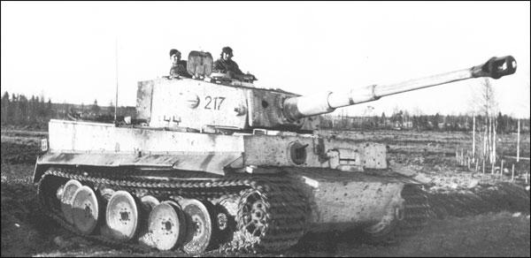 tigrisek-magyar-szolgalatban2