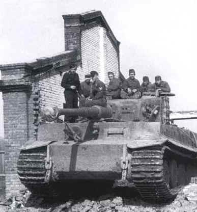 tigrisek-magyar-szolgalatban3