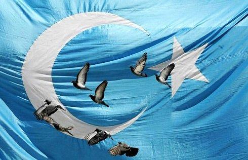 ujgur-zászló